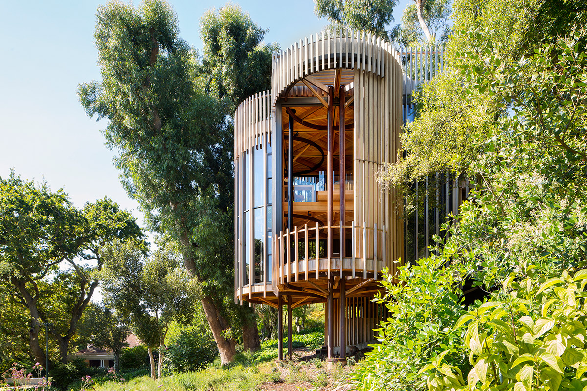 Tree House Malan Vorster Architecture Interior Design